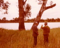 Jack and Louis Holmes at the lantern tree 1979